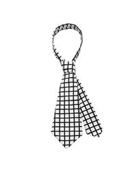 Scenery Label - White Grid Necktie for Men - Lyst