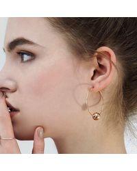 Alison Fern Jewellery Multicolor Bexley Hoops Rose Gold