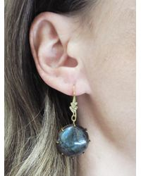 Cathy Waterman - Multicolor Labradorite Earrings With Leaf Tops - Lyst