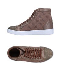Guess Brown High-tops & Sneakers