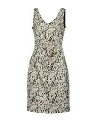 Nicole Miller Artelier - Gray Knee-length Dress - Lyst
