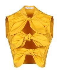 Vivetta Yellow Shrug