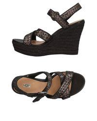 Ugg Black Sandals