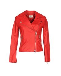 ViCOLO Red Jacket