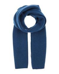 Cruciani Schal in Blue für Herren