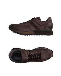 Cesare Paciotti Brown Low-tops & Trainers for men
