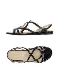 Agl Attilio Giusti Leombruni Black Sandals