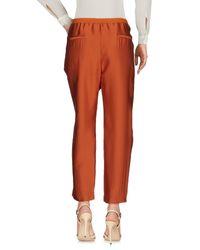 Maliparmi Brown Casual Pants