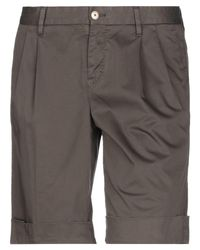 PT01 Brown Bermuda Shorts