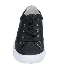 Armani Jeans Black Low-tops & Sneakers