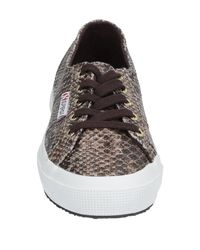 Superga Brown Low-tops & Sneakers