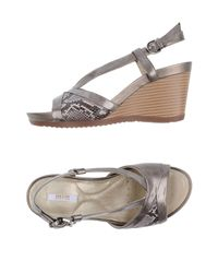 Geox Gray Sandals