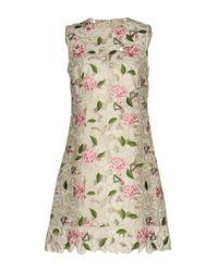 Dolce & Gabbana White Short Dress
