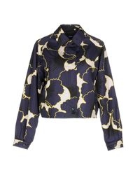 Jil Sander Navy Purple Jacket