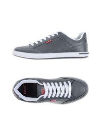 Levi's Gray Low-tops & Sneakers for men