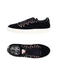 PUMA Black Low Sneakers & Tennisschuhe