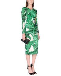 Dolce & Gabbana Green 3/4 Length Dress