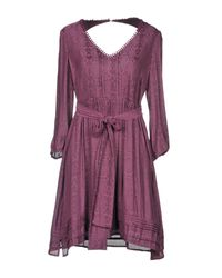Patrizia Pepe Purple Kurzes Kleid