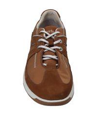 Timberland Brown Low-tops & Sneakers for men