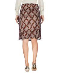 Maliparmi Brown Knee Length Skirt