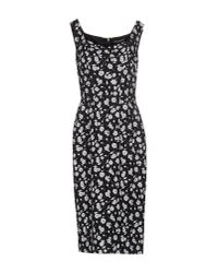 Dolce & Gabbana | Natural Knee-length Dress | Lyst