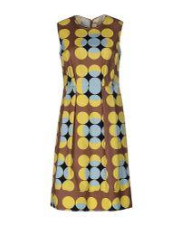 Marni | Yellow Short Dress | Lyst