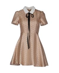 Sister Jane Natural Short Dress