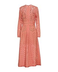 Elie Saab Pink 3/4 Length Dress