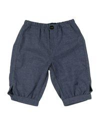 Brooksfield Blue Casual Pants for men