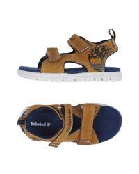 Timberland Blue Sandals