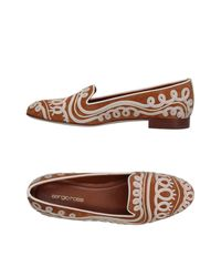 Sergio Rossi Brown Loafer