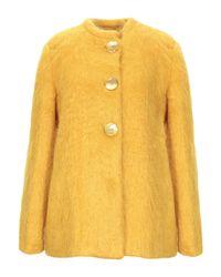 Abrigo Siyu de color Yellow