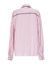 Camicia di MSGM in Pink