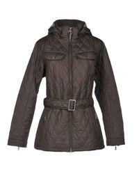 Barbour Brown Jacket