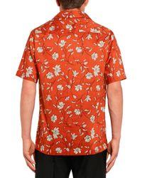 Cmmn Swdn Brown Shirt for men