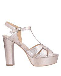 Sandales Adele Dezotti en coloris Pink