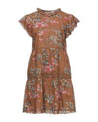 Robe courte Sea en coloris Brown