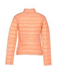 Blue Les Copains Orange Down Jacket