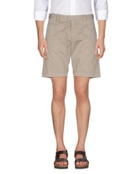 Exibit Gray Bermuda Shorts for men