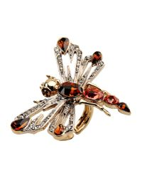 Roberto Cavalli Metallic Ring
