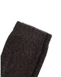 NN07 Brown Short Socks for men
