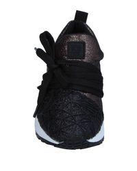 Colors Of California Black Low-tops & Sneakers
