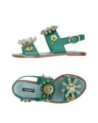 Dolce & Gabbana Green Sandale