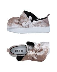 MSGM - Gray Low-tops & Sneakers - Lyst