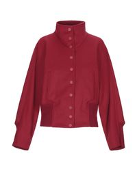 Giubbotto di Dondup in Red
