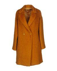 Cappotto di Brian Dales in Orange