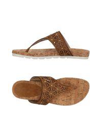Rebecca White Brown Toe Post Sandal