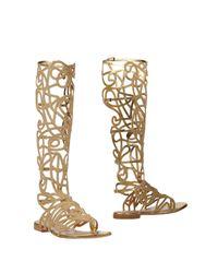 Alberta Ferretti Gray Boots