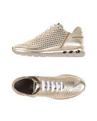 Ferragamo Metallic Low-tops & Sneakers