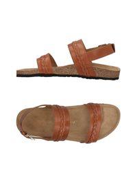 Maison Kitsuné Brown Sandals